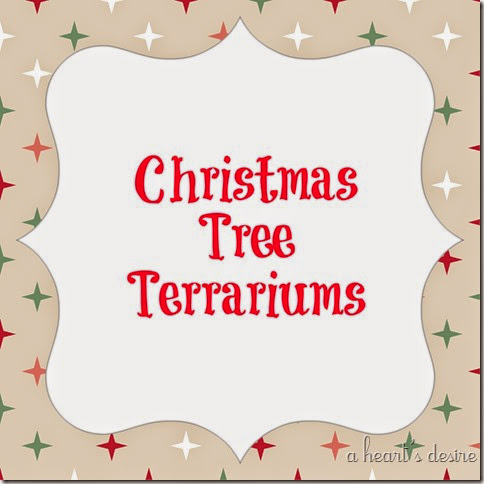 Christmas Terrariums