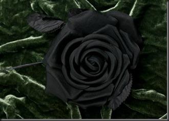 Silk Flower Small Black