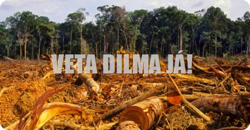 Desflorestamento na Amazônia