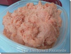 Fresh Strawberry Sorbet- The Backyard Farmwife