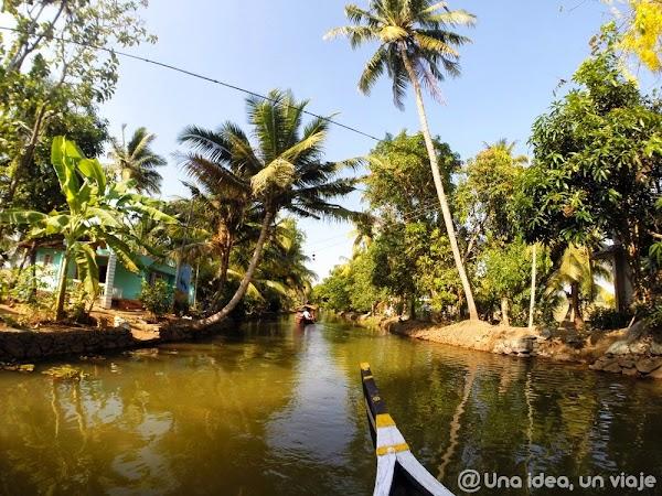 Kerala-backwaters-Kumarakom-2.jpg