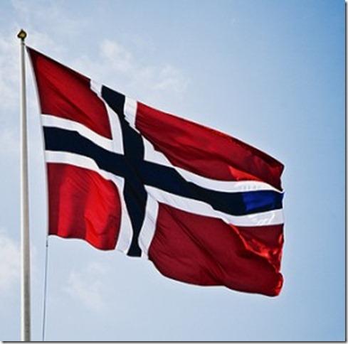 Det-Norske-flagg-298x295