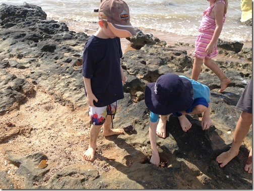 hunting for crabs at Gunn Point