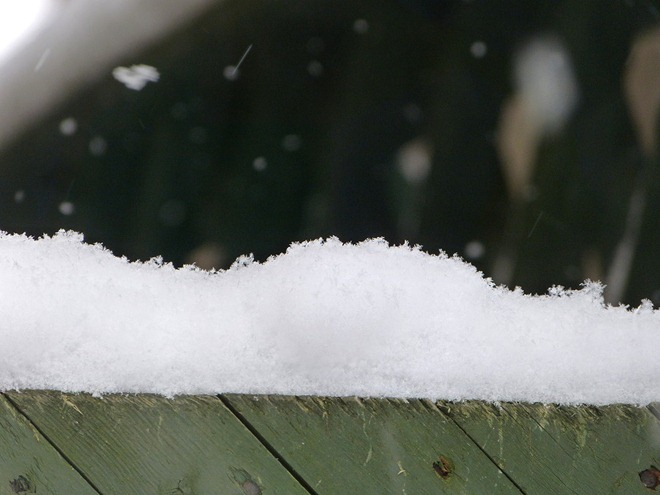 Снежок на заборе.