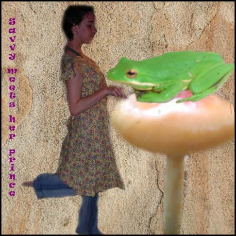 savvy frog mushroom