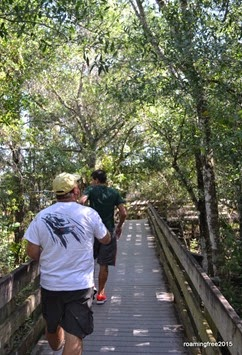 Walking along the boardwalk trail