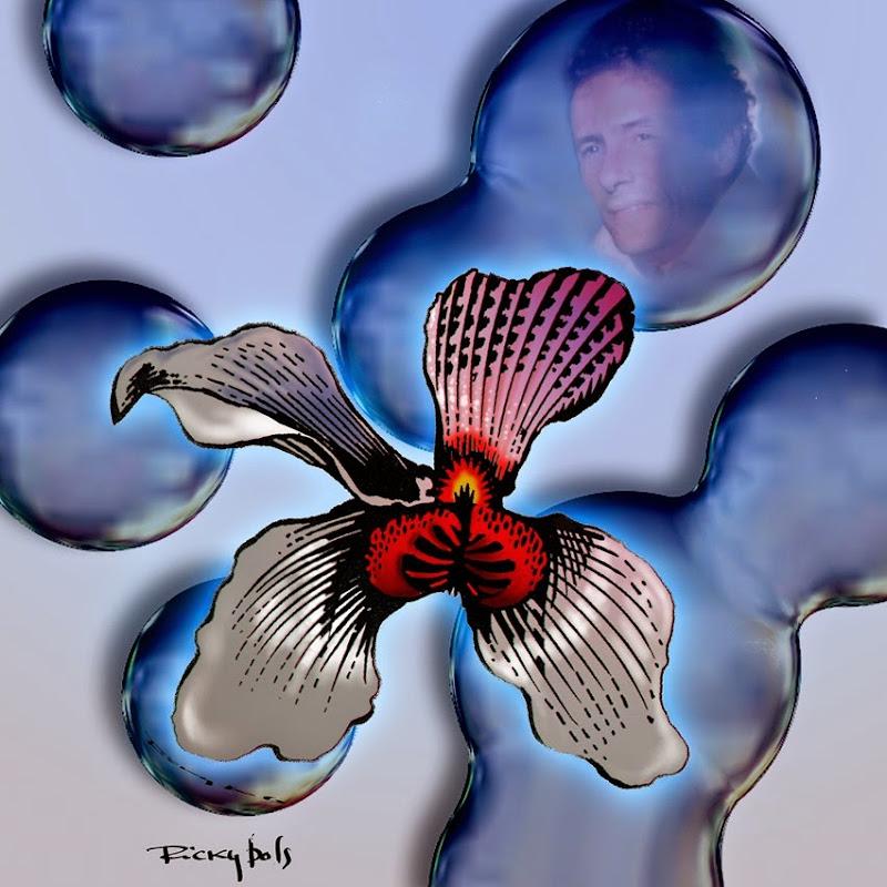 orquidea3lor
