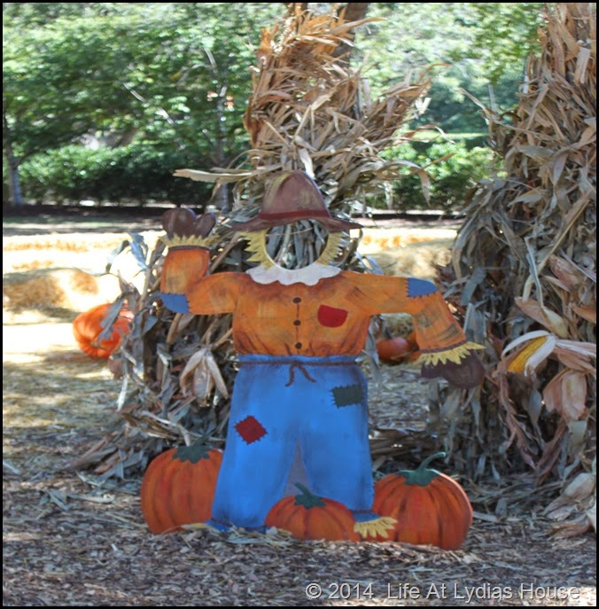 Dallas Arboretum - pumpkin festival-scarecrow photo booth 1