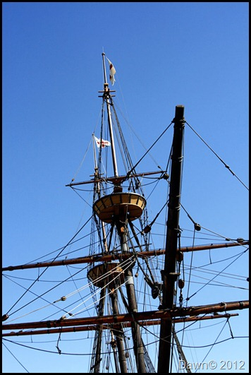 Mayflower-mast