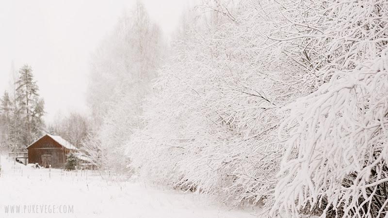 1-winter