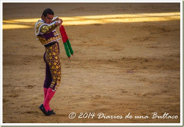 Toros 2014 (1)-15