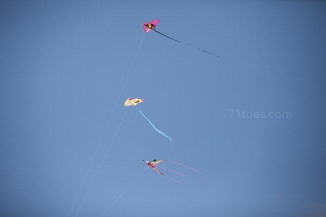 2013-07-04 Coronado 80163