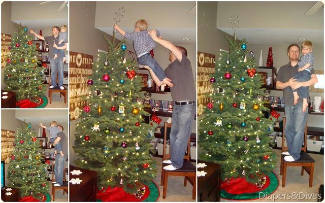 Tree 2011