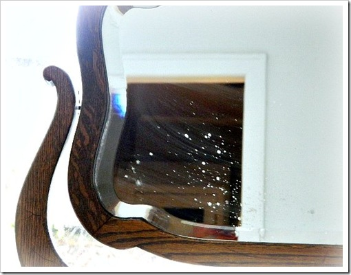 Craigs List Mirror Close up (550x413) (2)