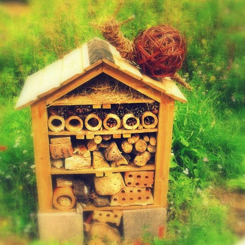insect hotel and a friendly snail