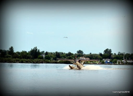 Seaplane landing on the river