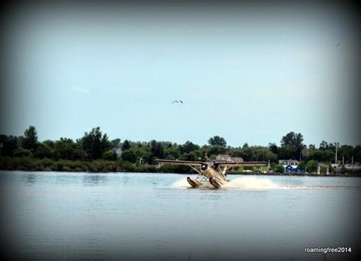 Seaplane landing on the river