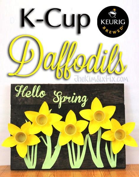 Kcup daffodil