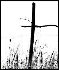 2012 Spring 149