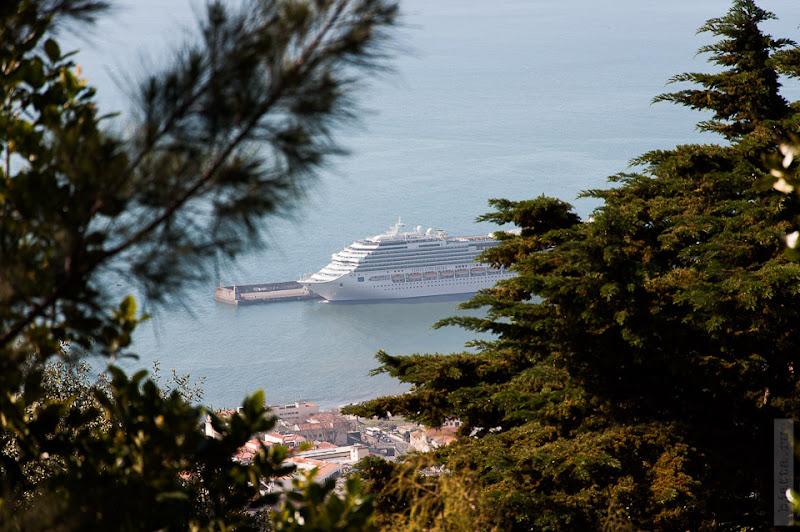 106. Февраль. Мадейра. Канатная дорога. Фуншал. Да, это Costa Concordia выглядывает между сосен.