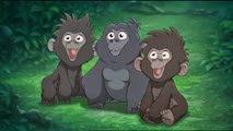 05 les petits gorilles