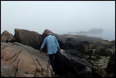 Focus on Acadia ranger talk 064