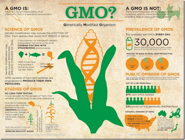 gmo-genetically-modified-organism_50290d5e92a11_w969
