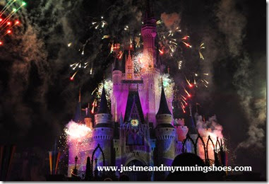 Mickey's Very Merry Christmas Party 2014 (6)
