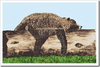 bear siesta stitchandpaintwhistler
