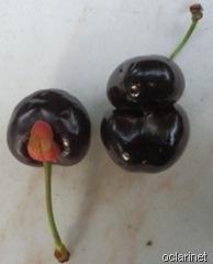 Cerejas - mutações ou imitações. Mai 2012