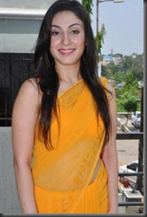 manjari in saree still