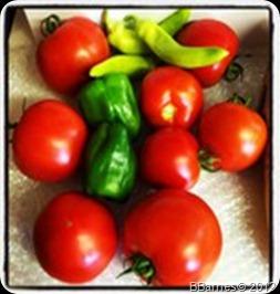 July 23 Harvest