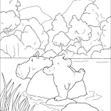 polar-bear-want-to-sit-on-hippo-coloring-page.jpg
