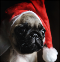 Sábado Geek navideño, recursos para esta navidad