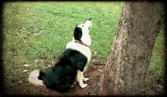 2011-10-02_14-58-35_625 - Julia,Sand1