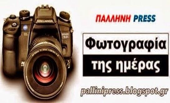 Photo 20140410090841[3]