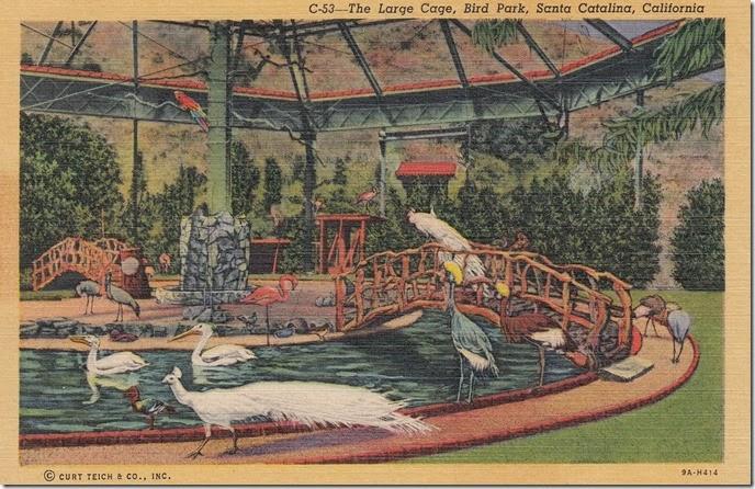 The Large Cage Bird Park, Santa Catalina, California pg. 1