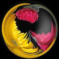 ying-yang-floral.jpg