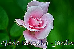 1 - Glória Ishizaka - Rosas do Jardim Botânico Nagai - Osaka