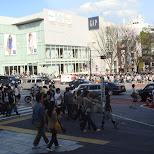 fashionable Omotesando street in Harajuku, Tokyo in Harajuku, Tokyo, Japan