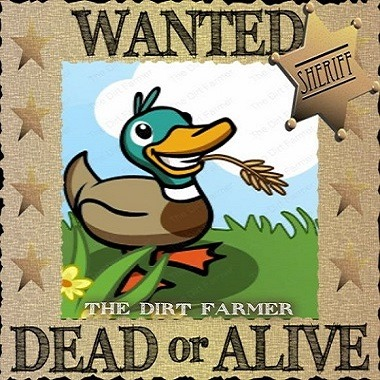 Farmville Duck Screen