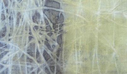 ECO PRINT Schlehenrinde auf Wolle teilweise Eisenbeize Detail