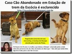 Caso Cão Abandonado em Estação de trem da