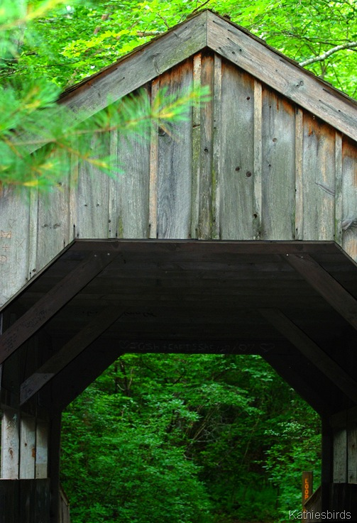 1. covered bridge-kab