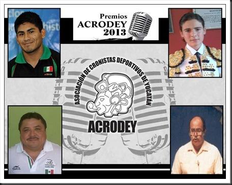 Premios ACRODEY 2013