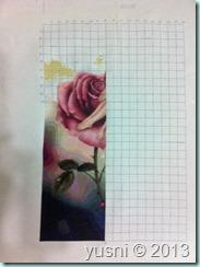 7 Rose 11-08-13