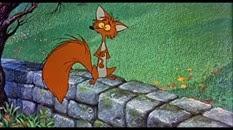 31 le renard