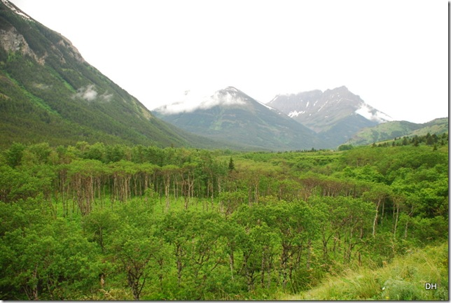 06-24-13 A Waterton National Park (66)