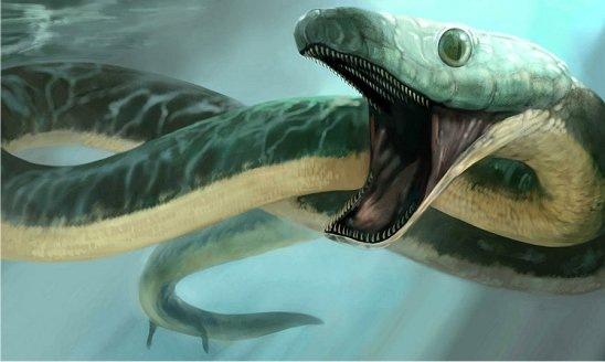Serpiente marina con patas vestigiales