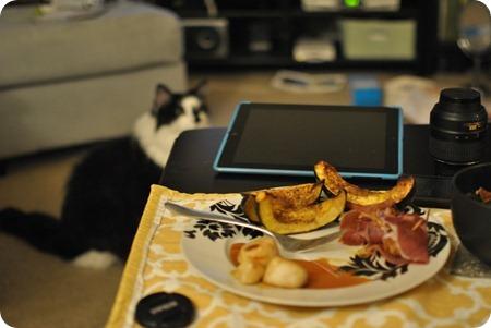 scallops and acorn squash and cat